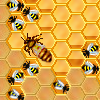 Play HoneySweeper