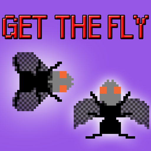 Play Get the Fly
