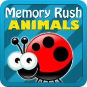 Play Animal Memory Rush