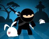 Play Ninja CC