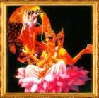 avatar for reddir