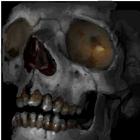 avatar for toonskull