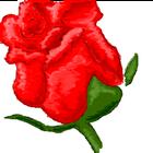 avatar for roserose311