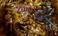 avatar for roxi_rocks24