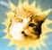 avatar for MightyMeowMixCat