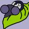 avatar for jacycough