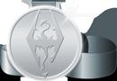 Skyrim full medal