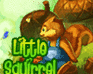 Play Irutia: Little Squirrel