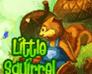 Play Irutia: Little Squirrel
