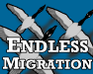 Play Endless Migration