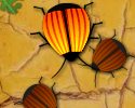 Play Time 4 Ladybug