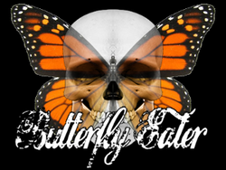 Play Butterfly Eater