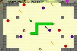 Play Fruity Snake