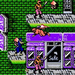 Play Ninja Gaiden Enhanced