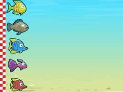 Play Fish Race Champions