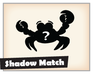 Play Shadow Match