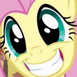 Play fluttershy fan chat