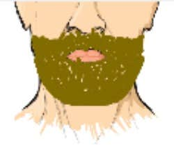 Play Grow Me A Beard