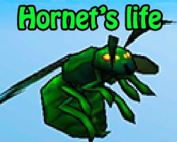 Play Hornet's life