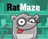 Play Rat Maze