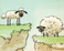 Play Home Sheep Home