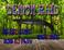 Play demon-raid