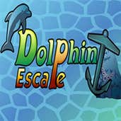 Play Dolphin Escape