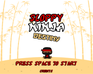Play Sloppy Ninja - Destiny