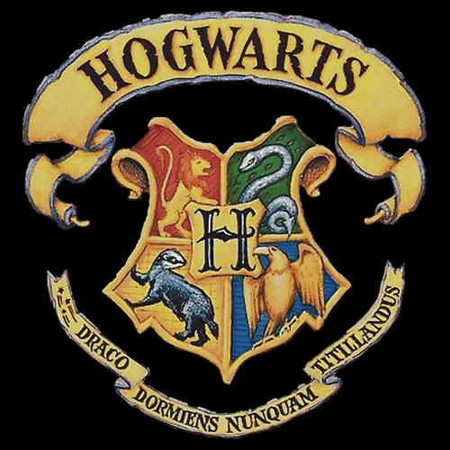 Play Hogwarts RPG