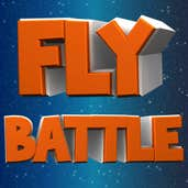 Play Fly Battle