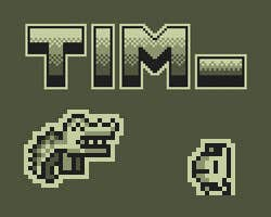 Play Tim_