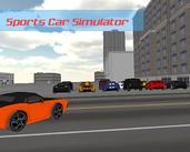 Play Sports Car Driving