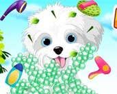Play My Puppy Care
