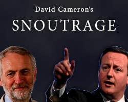 Play David Cameron's Snoutrage