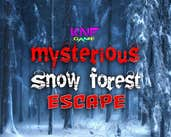 Play KNF mysterious snow forest escape
