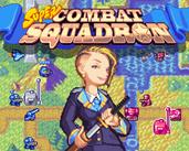 Play Super Combat Squadron