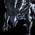 avatar for DarkGhost12
