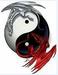 avatar for killer2521