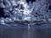 avatar for RainyShadow