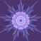 avatar for jikang13