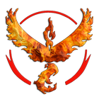 avatar for rugbypacks