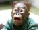 avatar for camcamcamaa
