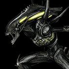 avatar for ShafTao