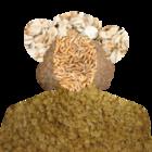 avatar for Cizinec