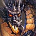 avatar for Kieroshark