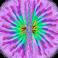 avatar for nimin2