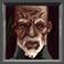 avatar for skytea