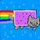 avatar for taylornysten