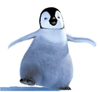 avatar for happyfeet412345