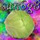 avatar for san6g8